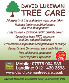 David Lukeman Tree Care