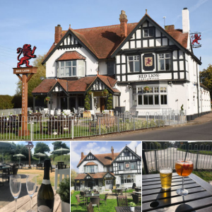 The Red Lion Earlswood Solihull Beer Garden