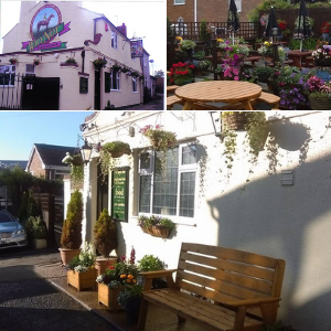 The Why Not Inn Beer Garden Halesowen Stourbridge