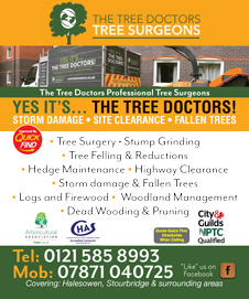 The Tree Doctor Tree Surgeons