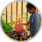 child watering plants, things to do with the kids